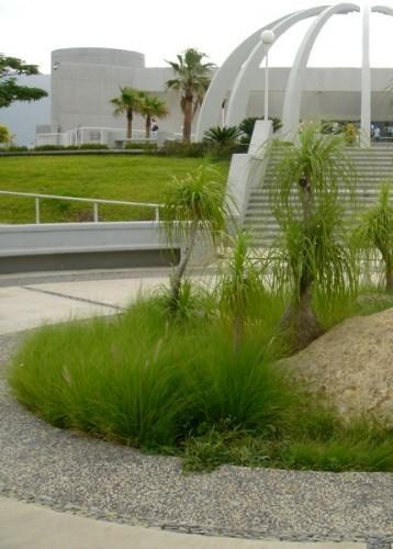 CD. VICTORIA. Museo TAMUX. Espacio central como área de encuentro, su arquitectura se integra a la topografía del terreno.