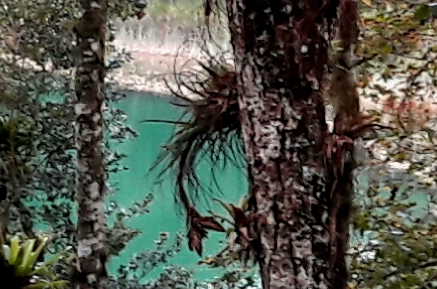 Laguna Ensueño. Lagunas de Montebello Chiapas. Cicloturismo 2017