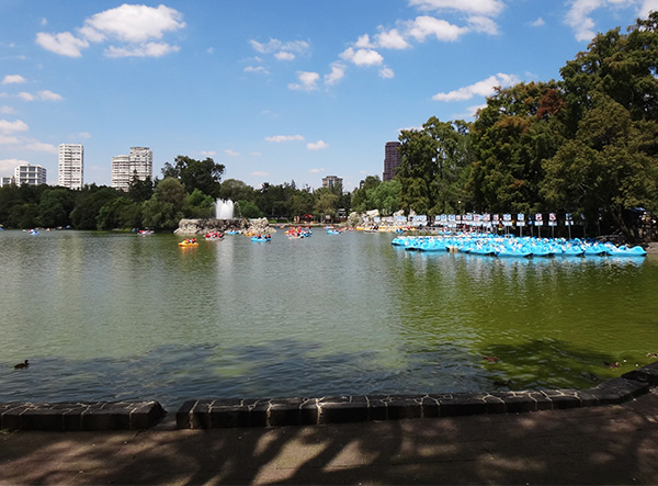 Lago de Chapultpec, 1a, sección, senderismo urbano. Alcaldía Miguel Hidalgo CDMX