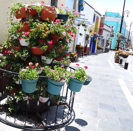 Calle y fachada de casas adornadas con flores en Atlixco, Pueblo Mágico, Estado de Puebla, México, senderismo urbano